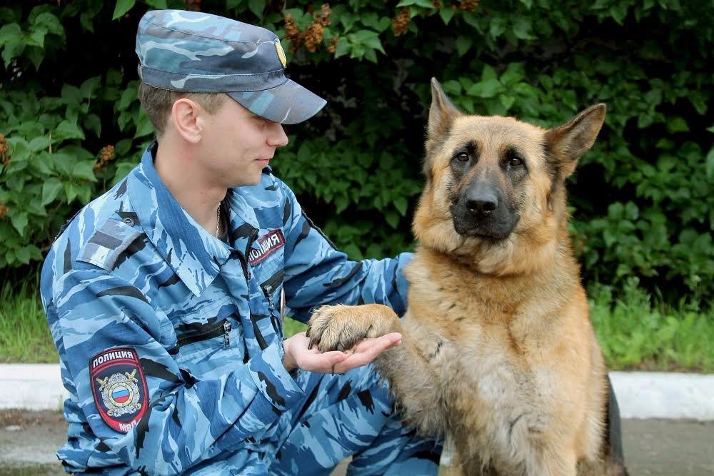 Картинки полицейский с собакой